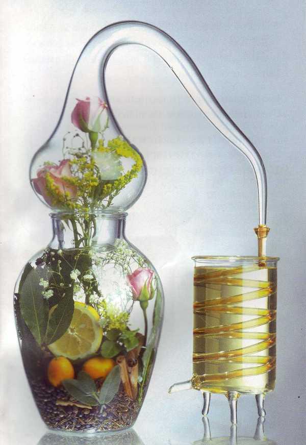 les bienfaits de l huile essentielle dictionnaire huiles essentielles. Black Bedroom Furniture Sets. Home Design Ideas